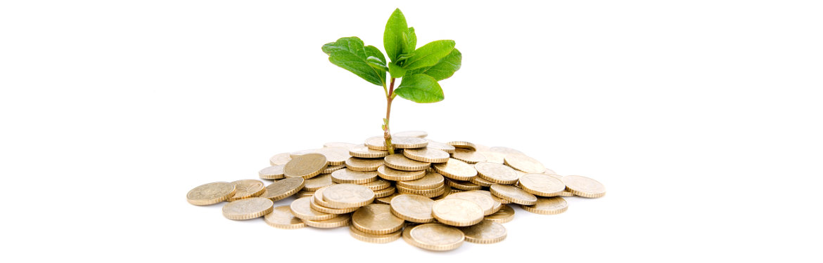 Independent financial advice to help your money grow